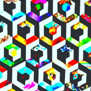 anns_large_cube-ed