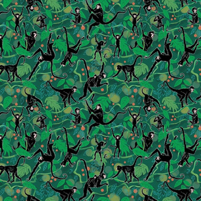 Spider Monkeys on Green