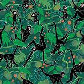 Spider Monkeys on Green