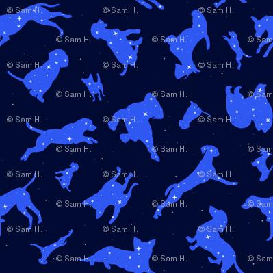 Constellation Dogs