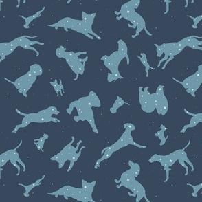 Constellation Dogs - Gray