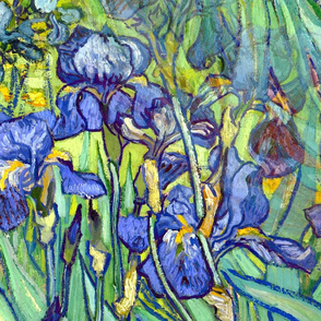 1898 Irises