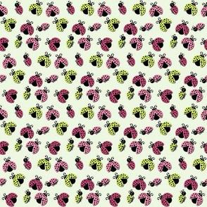 Ladybird Shuffle - Cloudy - Small