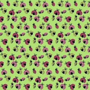 Ladybird Shuffle - Spring Green - Small