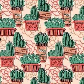 So many cactuses!