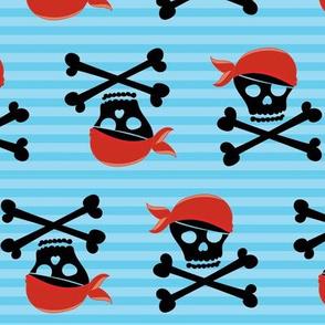 Pirate Skull 10