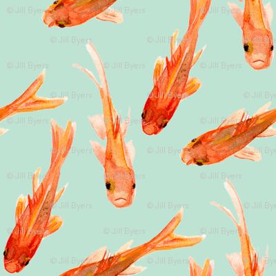 Goldfish -  Mint Background custom