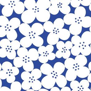 fleurs bleues de Henri
