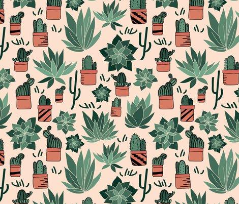 Rsucculents_hand_drawn-01_shop_preview