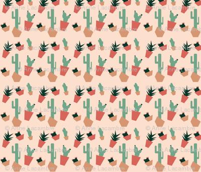 succulents_in_the_desert