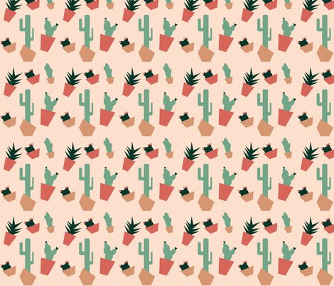 Rsucculents_in_the_desert_shop_preview