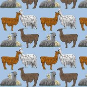 Love_llamas_blue_8x8_light_shop_thumb