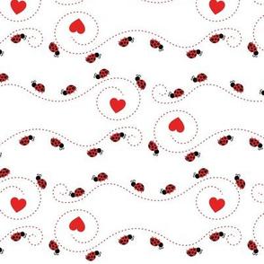 Cute Ladybugs 11