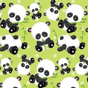 Cute Pandas 02