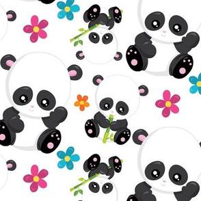 Cute Pandas 09