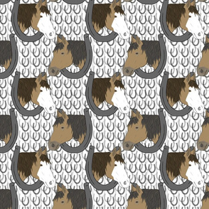 Horses in horseshoe portraits 6