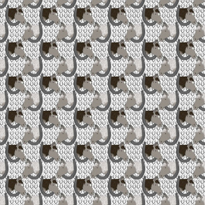 Horses in horseshoe portraits 7 - small