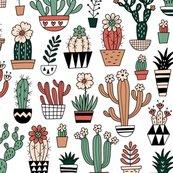 Rrrrrrblooming_succulents_shop_thumb