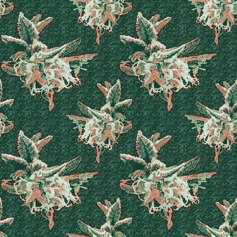 Succulant Sinsemilla fabric by camomoto on Spoonflower - custom fabric