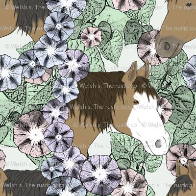 Floral Horse portraits 6
