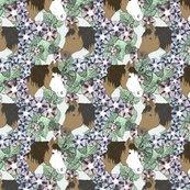 Rusticcorgihorsesfloralportraits006_shop_thumb
