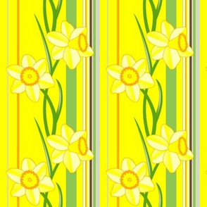 Daffodil stripes