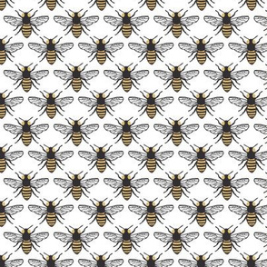 Honeybees - White