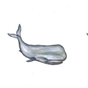 Itzi Bitzi Ocean Whale