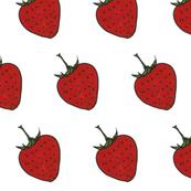 Strawberry Sketch Red