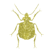 Gold Glitter Beetle
