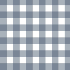 Dusty Blue Buffalo Check // bliss design studio