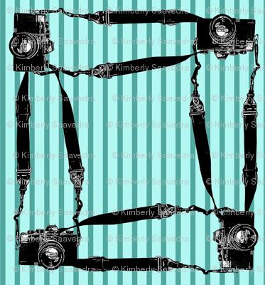 Cameras_square_preview
