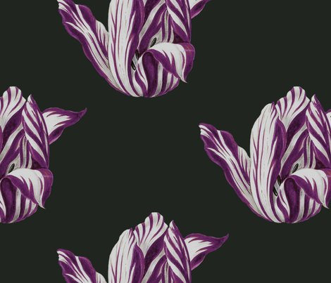 Midnight__tulips_in_merlot__shop_preview