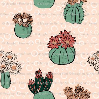 cactus_flower_limited_palatte-01