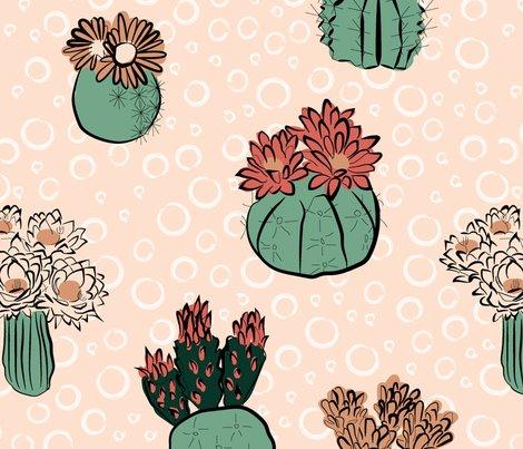 Rrcactus_flower_limited_palatte-01_shop_preview