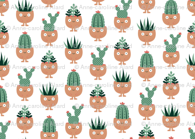 Succulent hairstyles