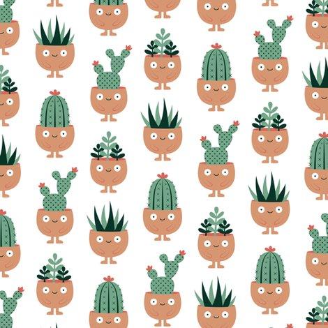 Rrrterracotta-pots-succulent-hairdo_shop_preview