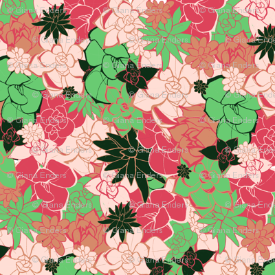 Succulent Limited Color Pattern