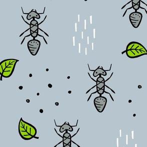 Ants - grey