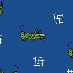 Grasshoppers - midnight