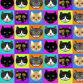 Feral Cats Multicolor