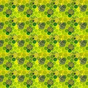 floral hexes