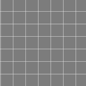 Large Gray Grid