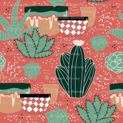 Desert Pots and Cacti