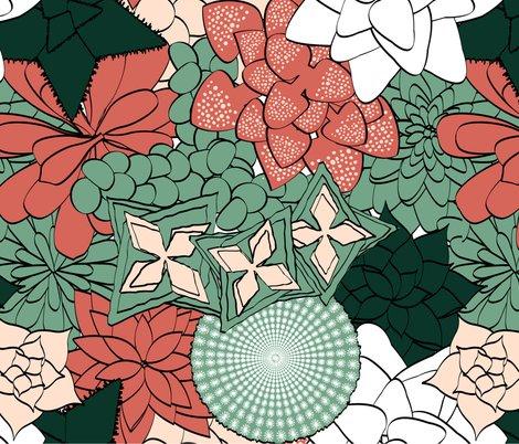 Rrrsucculents5_shop_preview