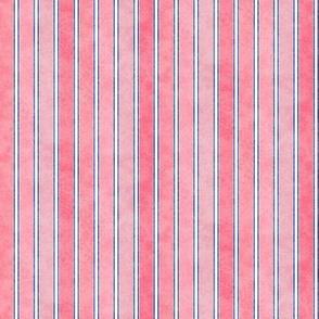 Stripes Faded Guava 225