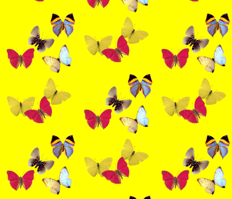 butterflies fabric by tell3people on Spoonflower - custom fabric