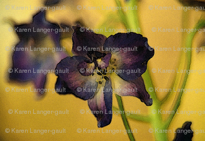Purple_flower_on_yellow
