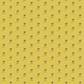 teeny tiny protea - yellow
