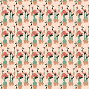 Cacti_Garden